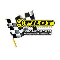 Frixion point, серия производителя Pilot