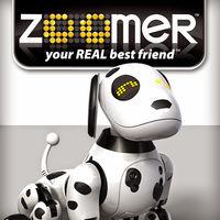 Производитель ZOOMER