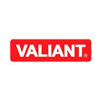 Производитель Valiant - фото, картинка