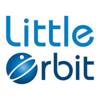Разработчик Little orbit